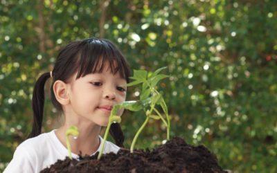 Sustentabilidade para crianças: elas aprendem fazendo